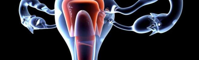 Лечение эрозии матки народными средствами