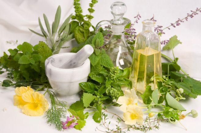 Какие лечебные травы можно пить во время беременности